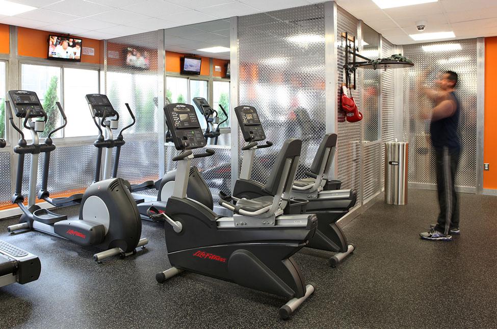 Fitness Center Speedbag User